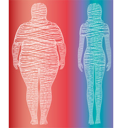 fat and slim woman figure vector image