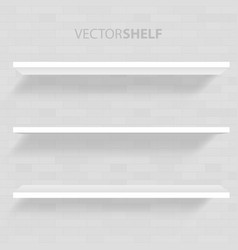 white shelf in gray background vector image