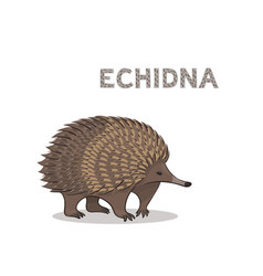 A cartoon echidna isolated on a white background vector