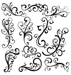 beautiful abstract curls collection vector image
