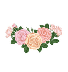 beautiful bouquet with pastel pink roses buds vector image