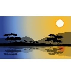 Beautiful silhouette of zebra in riverbank vector image