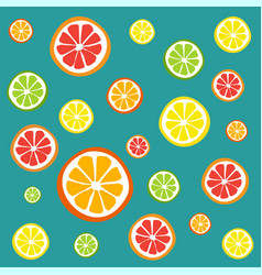 collection of citrus slices vector image