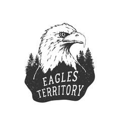 eagle territory vector image