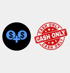 financial sum icon and scratched cash only vector image