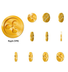 Gold rotate ripple frames vector