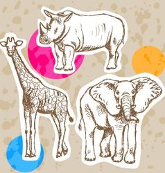 Rhino Elephant Geraffe vector