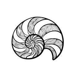 seashell nautilus spiral pattern wave nautilus vector image