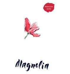 flower of magnolia watercolor vector image
