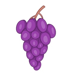 Grape icon cartoon style vector image