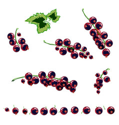 stylized berries set vector image