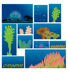 Underwater plants and corals vector
