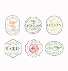 Vegetables and mushrooms frame badges or logo vector