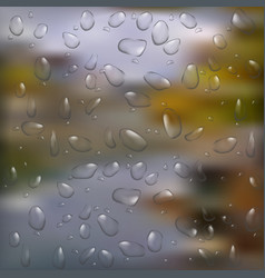 watter drops on window vector image