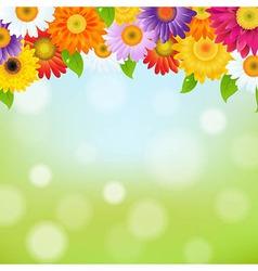 Color Gerbers Flower Frame vector image