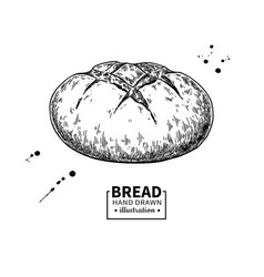 bread drawing bakery product sketch vector image