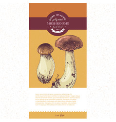 Package design for dried sliced porcini mushrooms vector