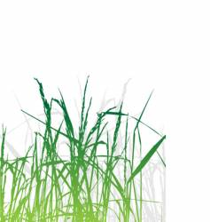 grass silhouette green summer background vector image vector image