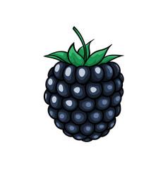 Beautiful cartoon blackberry symbol summer vector