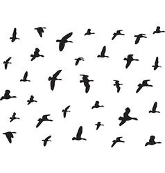 Birds flying vector image vector image