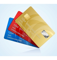 Credit Cards isolated vector image