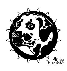 graphic drawing of a dog head dalmatian vector image vector image
