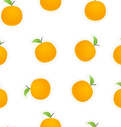 Oranges on white vector image vector image