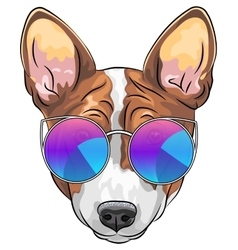 hipster serious dog Beagle in glasses vector image