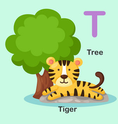 isolated animal alphabet letter t-tree tiger vector image