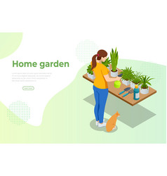 isometric woman grows flowers in home garden vector image