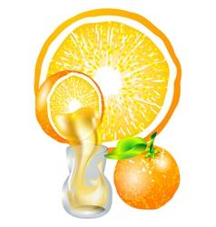 Orange and juice vector