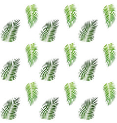 Palm trees on white background seamless pattern vector