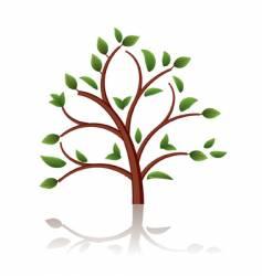tree beautiful vector image