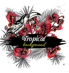 tropical back with orchid flowers and toucan vector image