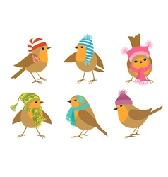 Winter robins vector