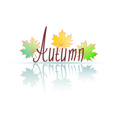 Word autumn because of from hands autumn maple vector