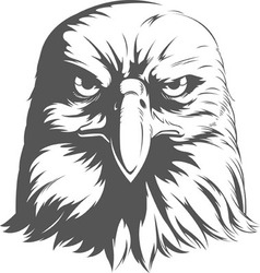 Eagle silhouettes front view vector