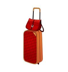 A baggage vector