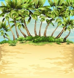 beach with tropical palm vector image