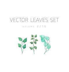 Bright watercolor set leaf vector