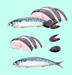 Watercolor sea food set vector