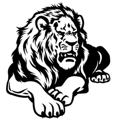 lion black white vector image vector image