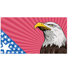 bald eagle background vector image