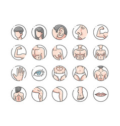 Human body outline color icons set vector