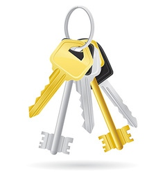 key 19 vector image