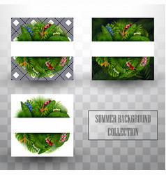 summer tropical leaves background collections vector image