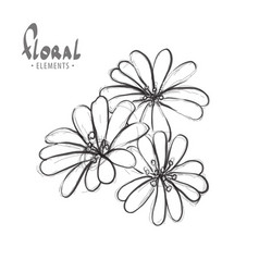 flowers on a white background vector image vector image