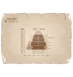 2016-2020 population pyramids graphs with 4 genera vector
