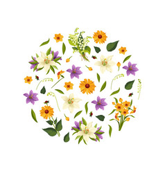 beautiful flowers round shape decorative vector image