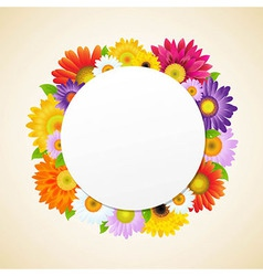 Colorful Gerbers Flower vector image